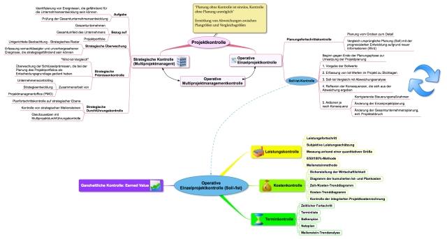 Leistungskontrolle im Gesamtkontext der Projektkontrolle