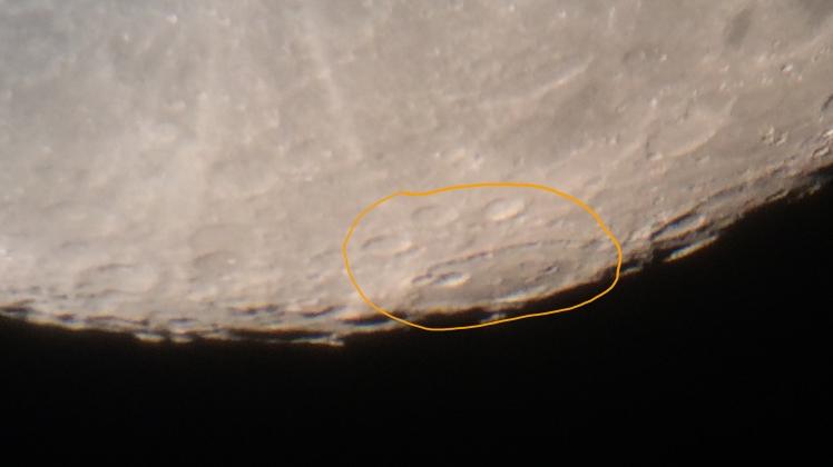 Mond Katzenpfote
