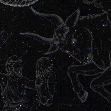 Sternbild Stier Illustration
