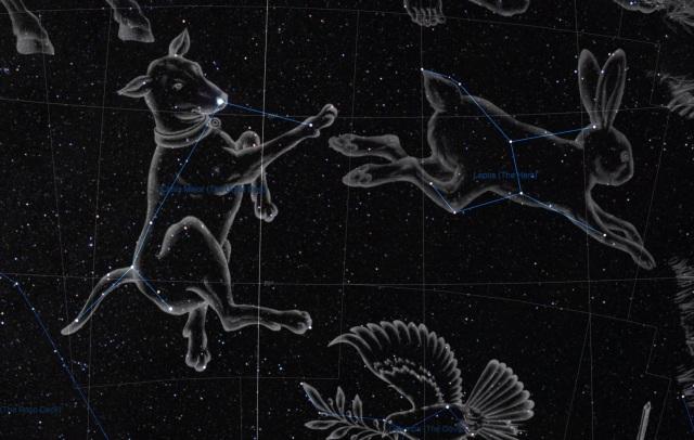 Sternbilder Großer Hund und Hase - Illustrationen