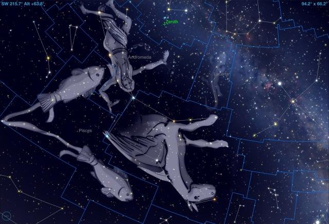 Sternbild Pegasus: Illustration