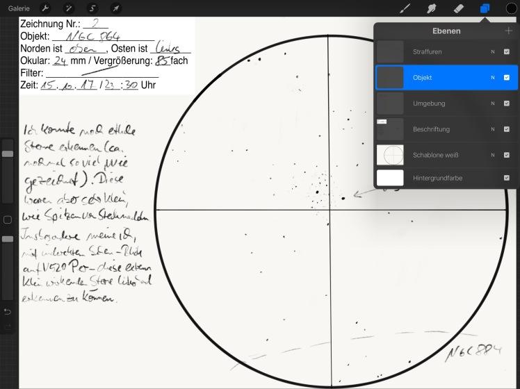 """Procrate für Zeichnungen des beobachteten Objekts auf dem iPad Pro 12,5"""""""