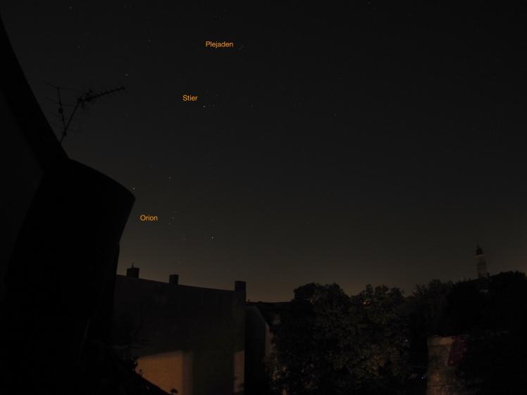 Plejaden, Stier und Orion gehen nach Mitternacht auf